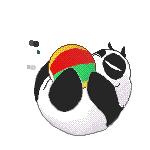 panda ranma